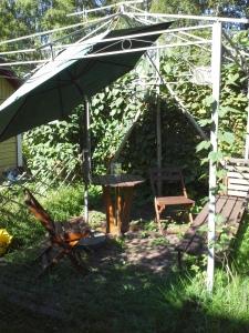 kaljateltan runko puutarhassa