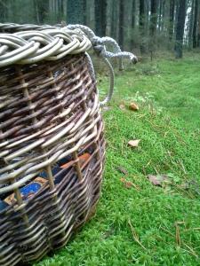tyhjä-sienikori-sammaleella