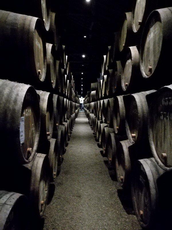 Taylor's port viinikellarin tynnyreitä